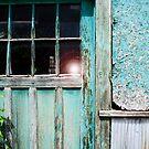 beauty in the alley by Lynne Prestebak