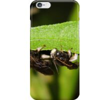 Mystery Bee iPhone Case/Skin