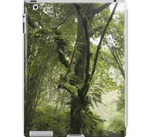 Early Morning, Central China iPad Case/Skin