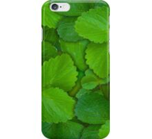 Holy Basil Tulsi Green Mint Leaves iPhone Case/Skin