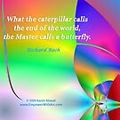 The Master calls a Butterfly by Kazim Abasali