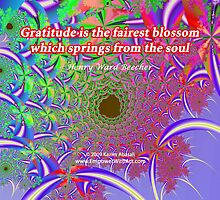 Gratitude is the Fairest Blossom by Kazim Abasali