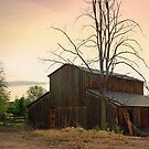 Old Barn - Eagle, ID by Rich Summers