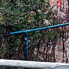 Blue hand rail by Larry McLean