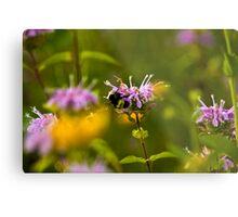 Flowers & Bumble Bee Metal Print