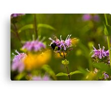Flowers & Bumble Bee Canvas Print
