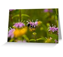 Flowers & Bumble Bee Greeting Card