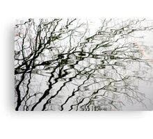 Water Branches Canvas Print