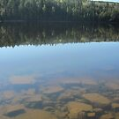 Lakeside Landscape by Christopher Clark