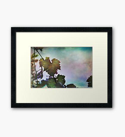 A Ribbon in the Sky Framed Print