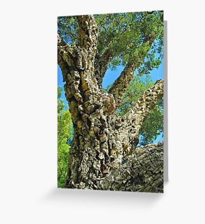 Cork Tree Greeting Card