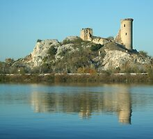 View along the Rhone: A Castle That Was by Laurel Talabere