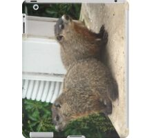 I got your back! iPad Case/Skin