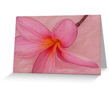 Pink on Pink Greeting Card