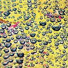 Droplets on Yellow by Susan Werby