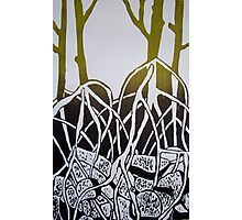 Mangroves - series one Photographic Print