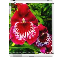 #295          Red & White Orchid iPad Case/Skin
