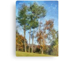 Tall Trees Against A Blue Sky Metal Print