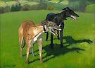 Greyhound Portrait - Oil on Canvas by Simon Groves