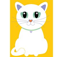 Only One White Kitty Photographic Print