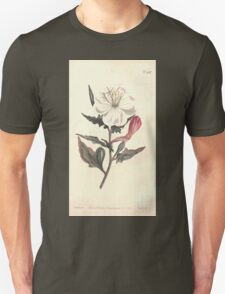 The Botanical magazine, or, Flower garden displayed by William Curtis V13 V14 1799 1800 0085 Oenothera Tetraptera White Flowered Oenothera T-Shirt