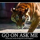 Tiger Terror by Ian Fraser