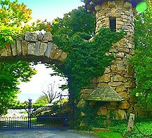 Stone Entry by Pamela Plante