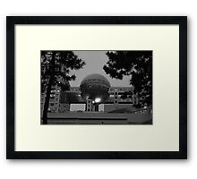 Fuji Ball Framed Print