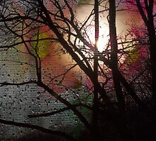 Sunset, window screen, and raindrops by Keith Vander Wees