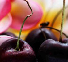 Cherries & Pink Frangipanies - Still Life Sticker