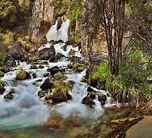 Tarawera Falls by Ken Wright