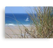 From the dunes Canvas Print