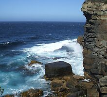 View from Tasman Arch Track by mariahswind