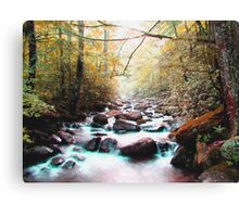 Forest Stream Canvas Print