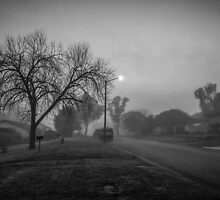 Winter Mornings in Black and White by Allport Photography