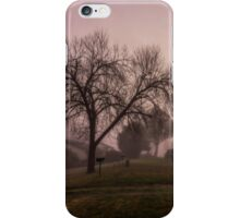 Winter Mornings in Colour iPhone Case/Skin