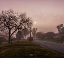 Winter Mornings in Colour by Allport Photography