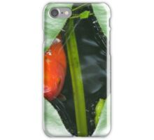 Through the Lily Pad iPhone Case/Skin