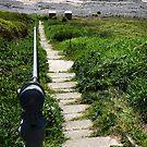 Long way down by sarnia2
