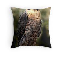 Australian Peregrine Falcon (Falco peregrinus macropus) Throw Pillow