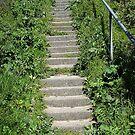 Long way up! by sarnia2