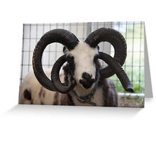 Orchestral Horns Greeting Card