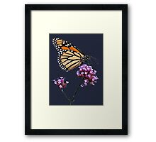 Monarch tee2 Framed Print