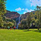 Walter Sisulu Gardens by JandeBeer