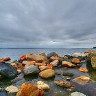 greenwich bay by Alexandr Grichenko
