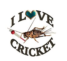 FOR THE LOVE OF THE SPORT & GAME OF CRICKET..FUN PICTURE OF A CRICKET PLAYING THE GAME CRICKET LOL...TEE SHIRTS,PILLOWS,TOTE BAGS,SCARF,CELL PHONE COVERS ECT.. by ✿✿ Bonita ✿✿ ђєℓℓσ