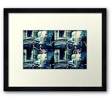 romolomoacido Framed Print