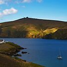 Burrafirth In Unst III by Gary Buchan