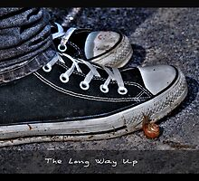 The Long Way Up by tigerwings