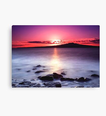 Magenta Gazes On Silver Mist Canvas Print